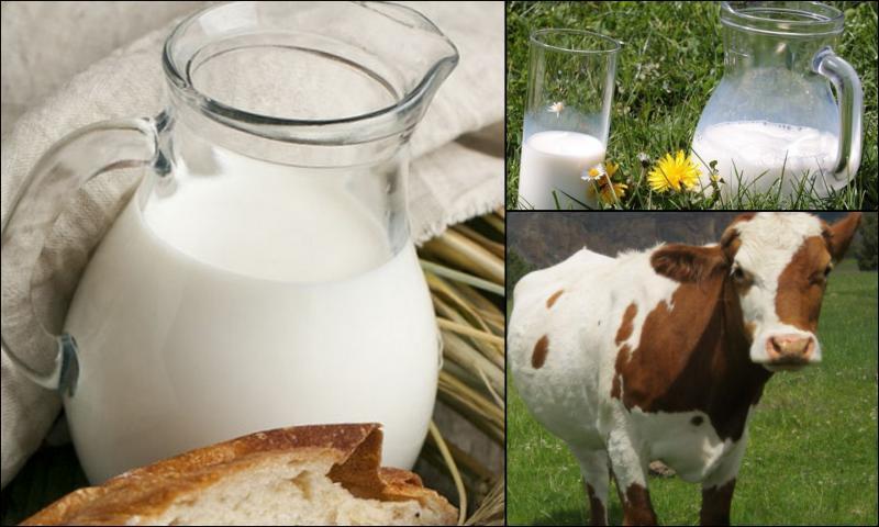 Günlük Doğal Süt Kaç Günde Bozulur