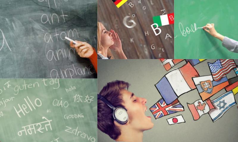 Bir Dil Bir İnsan