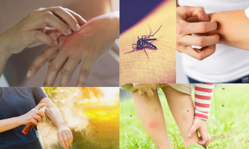 Sivrisineklerden Korunma Yöntemleri